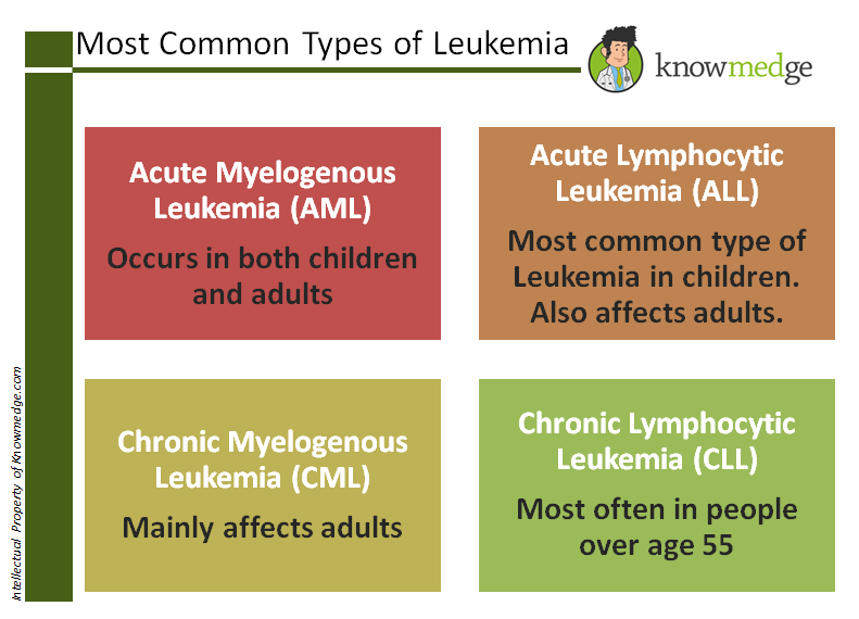 ABIM-USMLE-Step-3-Leukemia-CLL-AML-CML-ALL